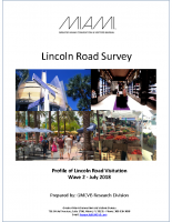 Lincoln Road Wave 2 report